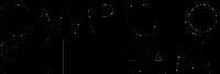 Campiglio Ski Team Logo